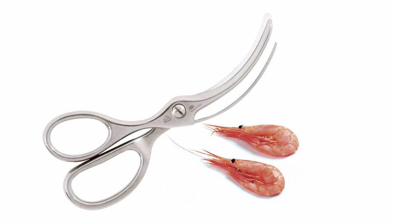 premax un coltello da pane e uno per il sushi 10