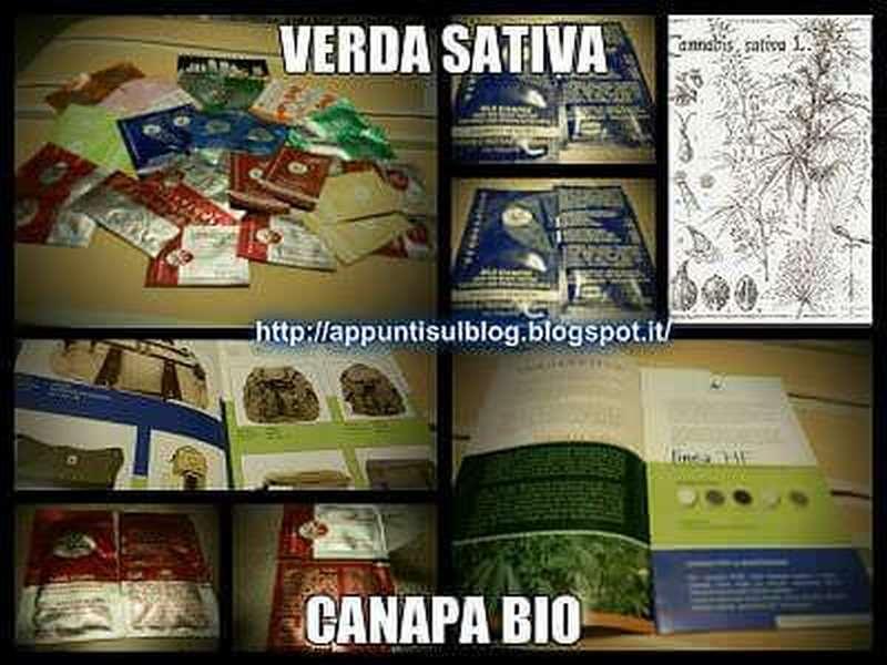 Verdesativa Canapa Bio, benessere dalla canapa 1 #beauty