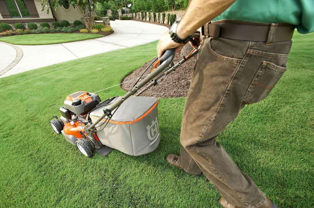 Attrezzi giardinaggio tosaerbe, tagliasiepe e tritarifiuti e manutenzione