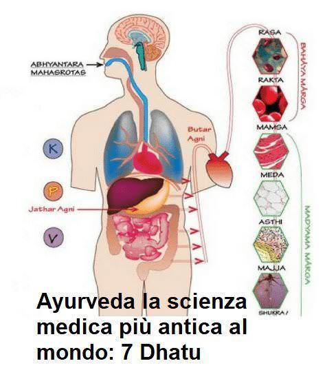 Ayurveda la scienza medica più antica al mondo