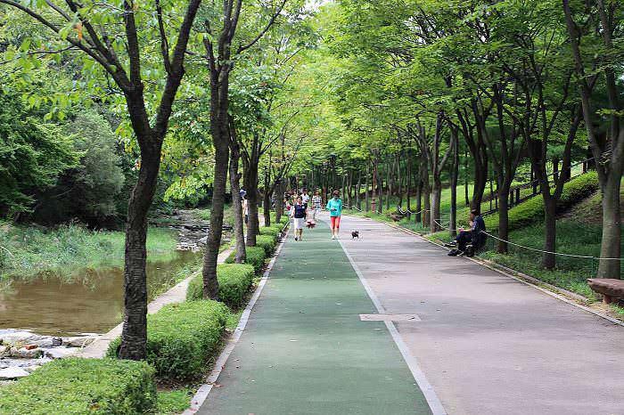 10 buoni motivi per camminare ogni giorno nel parco