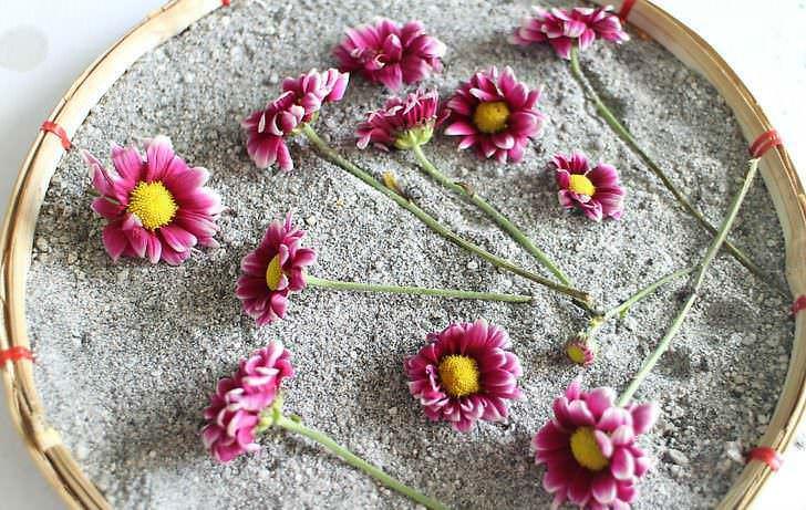 Come conservare i fiori recisi, 7 metodi facili